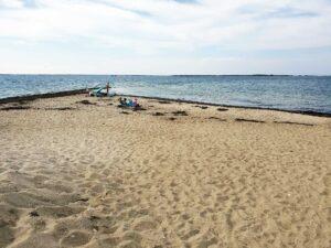 pocomo beach | Nantucket, MA