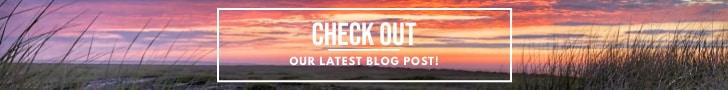Nantucket Blog