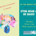 STEM Grab & Go Bags: Chromatography Flowers | Nantucket, MA