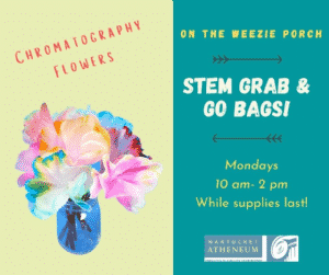 STEM Grab & Go Bags: Chromatography Flowers | Nantucket, MA