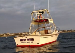 West Wind 300x211 1