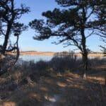 Walkabout Lost Farm Sanctuary