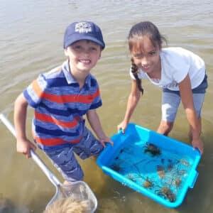 Beach Biology Field Trip - Maria Mitchell