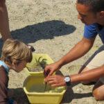 Marine Ecology Field Trip - Maria Mitchell