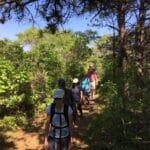 Walkabout Shawkemo Hills