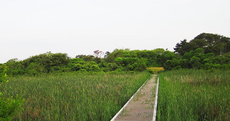 Walkabout Gardner Farm