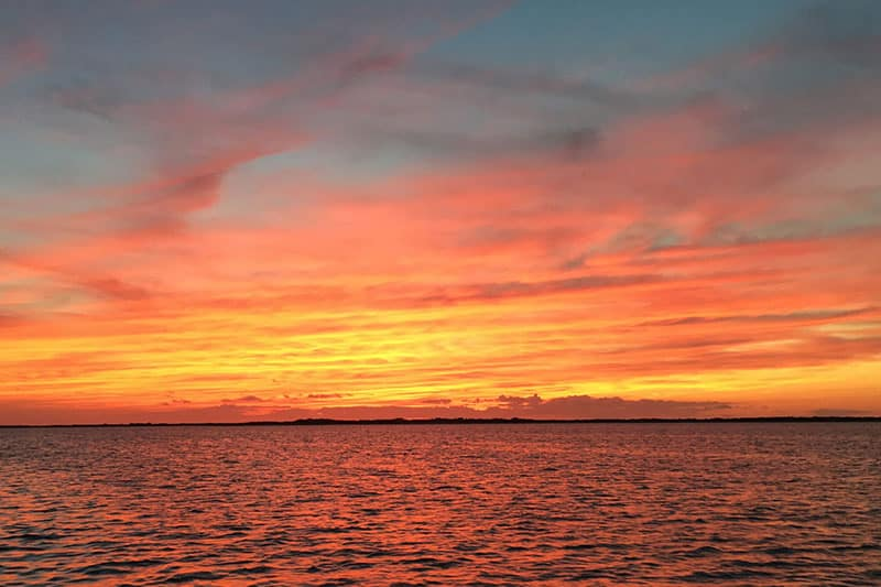 Shearwater Excursions Sunset Cruise